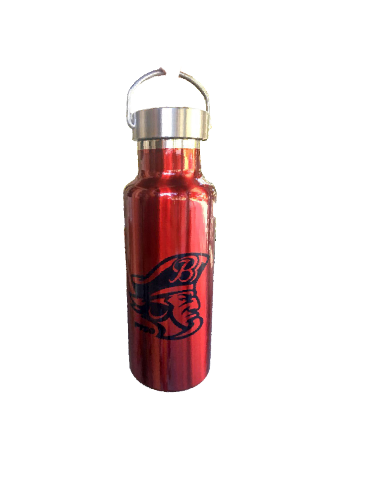 17oz Stainless Steel Water Bottles