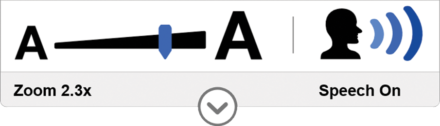 Sitecues Control Panel icon