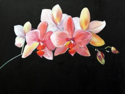 Aldis Elfarsdottir, Orchids (Oil)