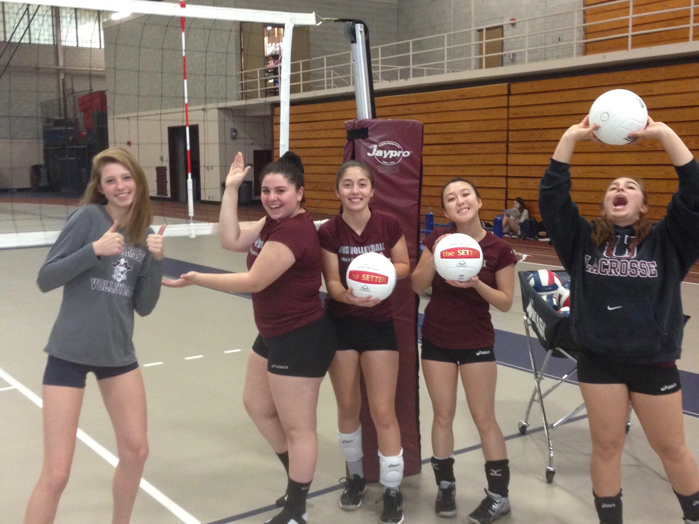 2016 volleyball antenna and balls